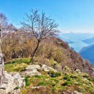 Alpine Coaching Valle Intelvi